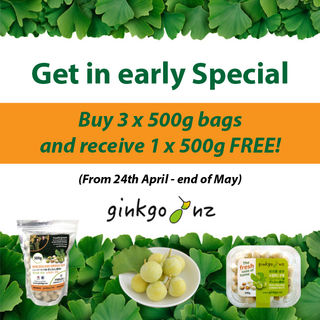 3 x 500g Fresh Gingko